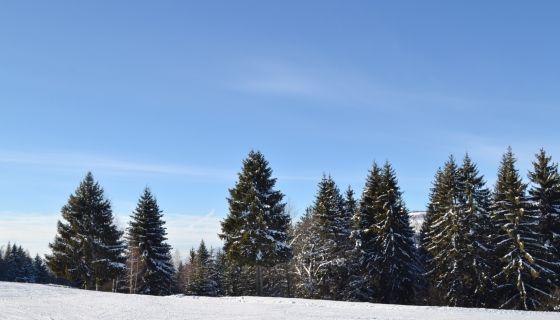 Zima na planini - Zlatar 2016
