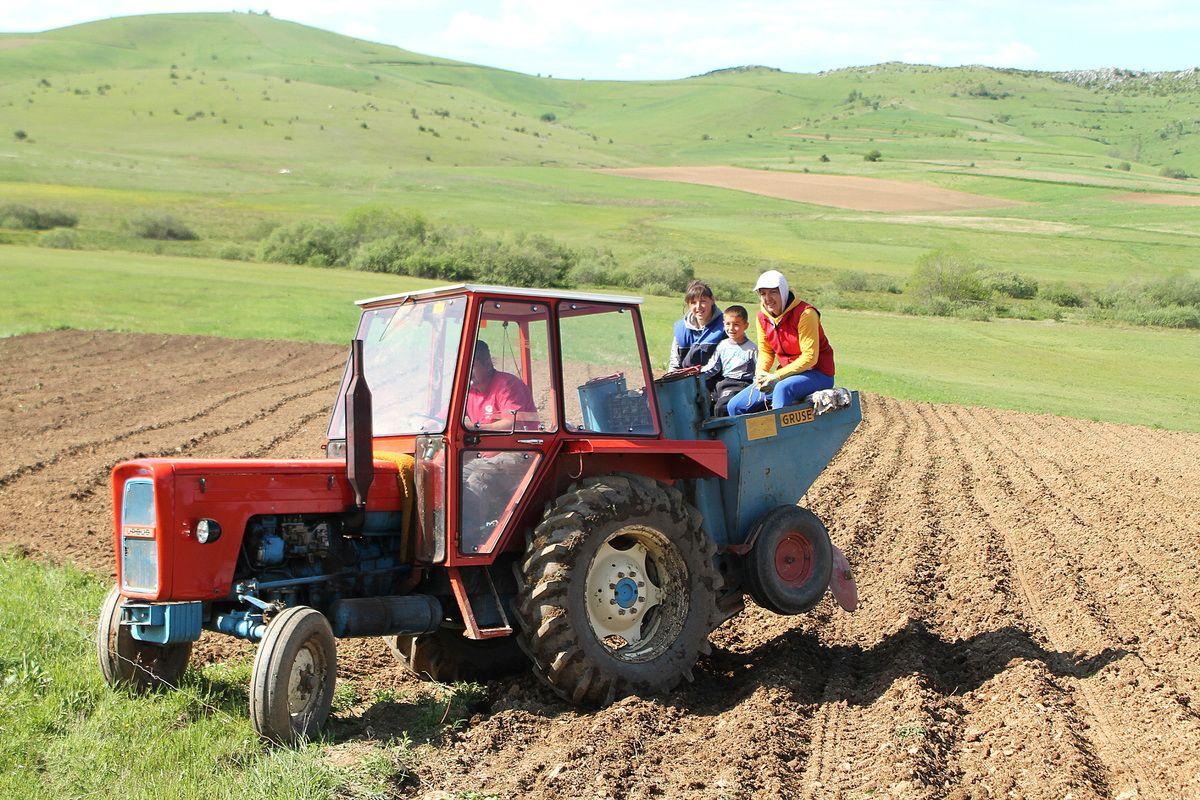 Трактор, кромпиришта