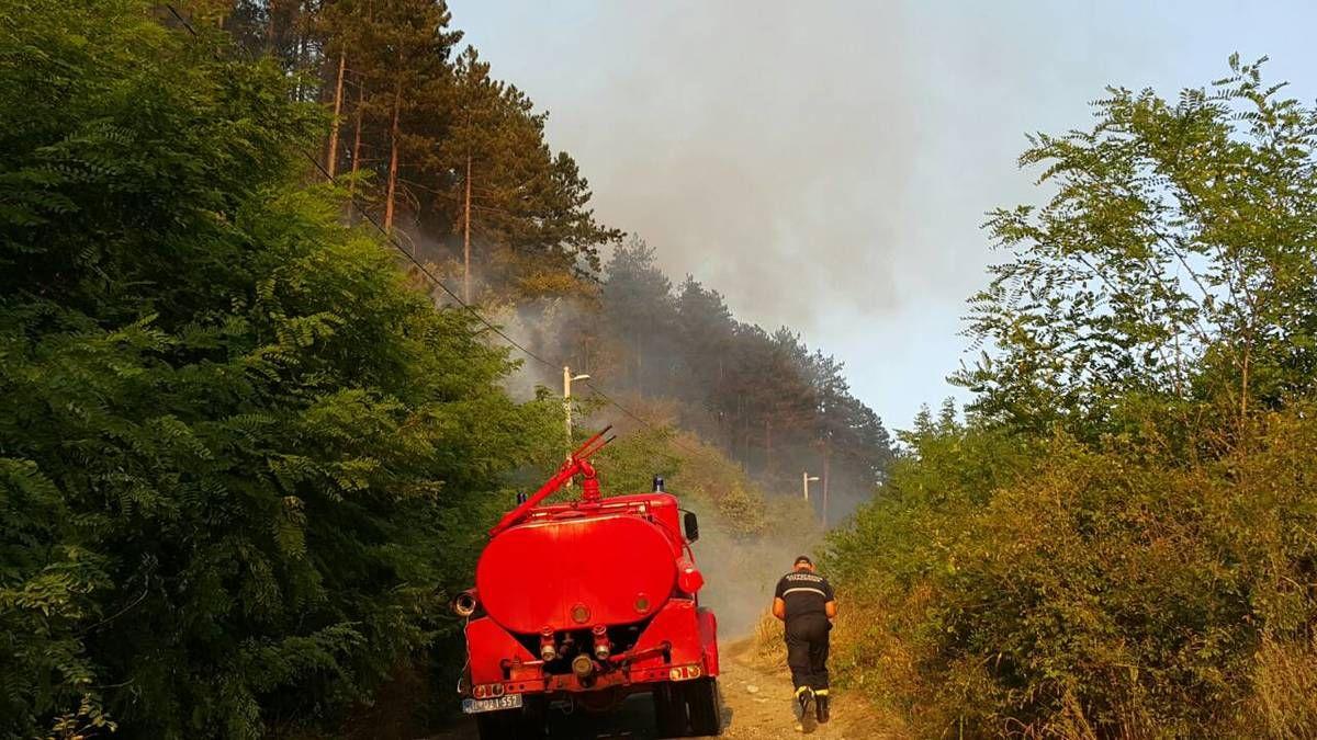Гори борова шума недалеко од болнице у Пријепољу, угрожено неколико насеља