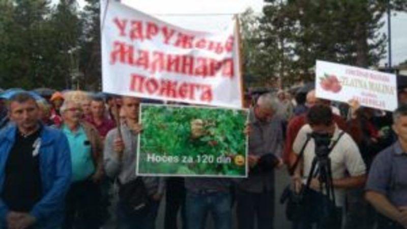 Протест малинарa