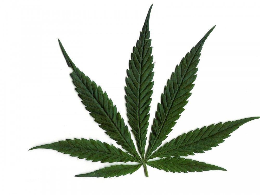 List marihuane
