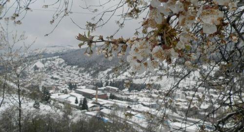 Majski sneg u Novoj Varoši