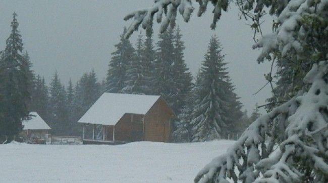 Sneg na Zlataru