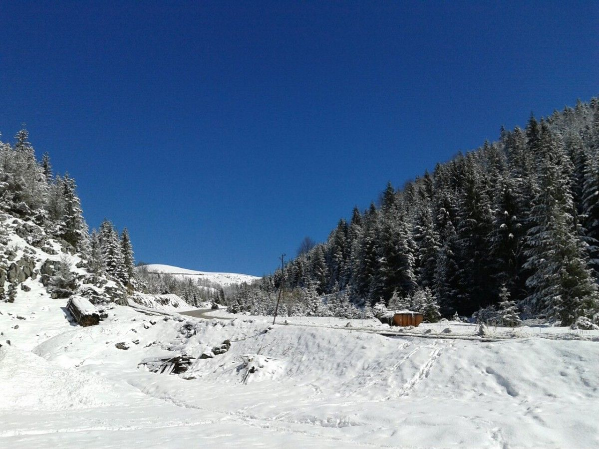 April u Jasenovu
