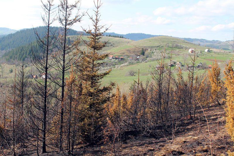 Недалеко од кућа у Дебељи је изгорело 20 хектара растиња