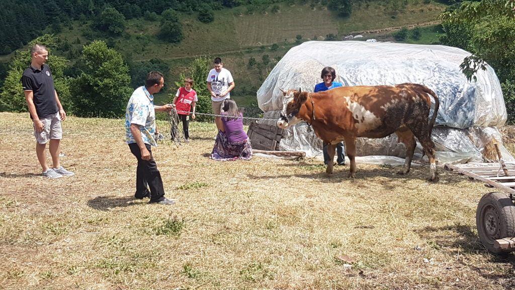 ХО Срби за србе помогли породици Думбеловић, фото: www.ппмедиа.рс
