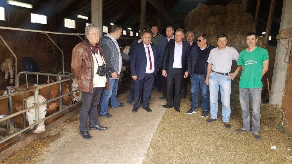 Делгација српске дијаспоре у посетил фарми крава породице Поповић