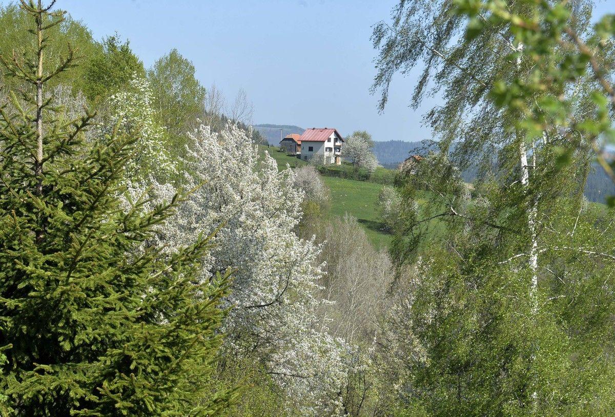 Пролеће на Златару