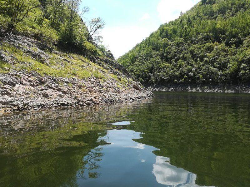 Чиста језерска вода дом је за многе врсте риба...