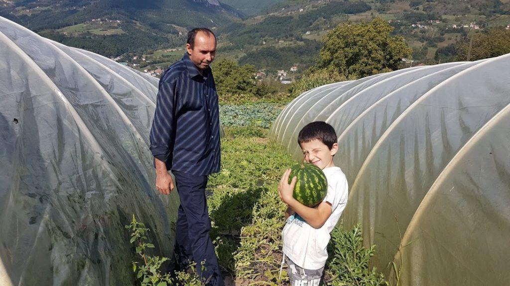 Лубеница успева и у Великој Жупи