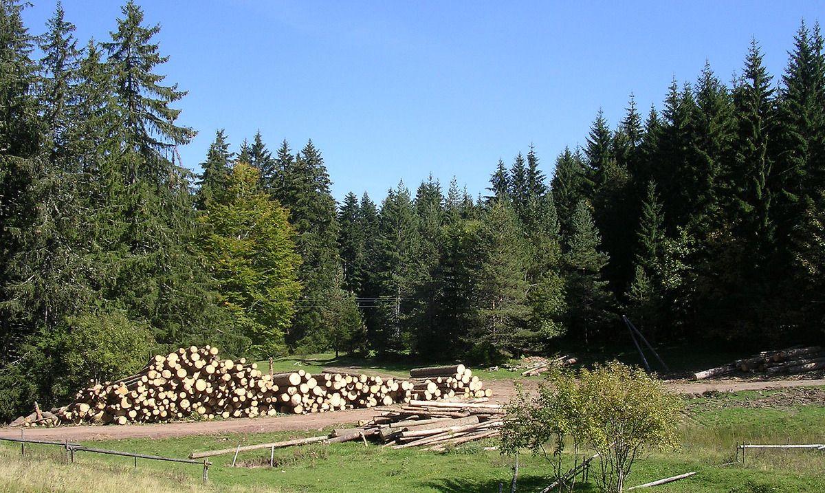 Иза лагера грађе још се назиру рушевине планинарског дома