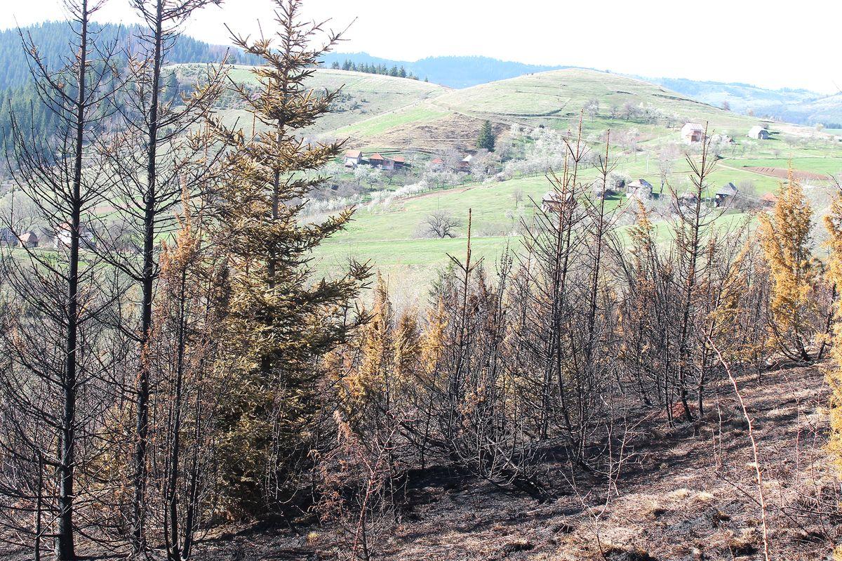 Пожар у Доњој Дебељи