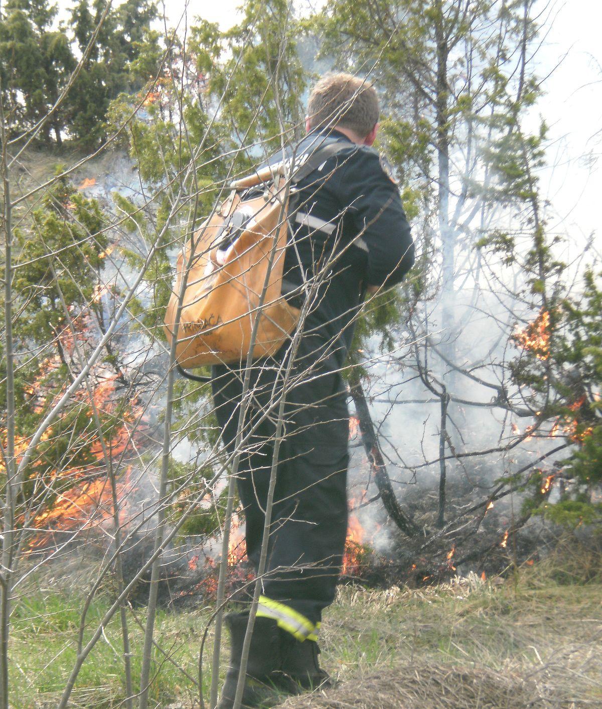 Пожар у Дебељи