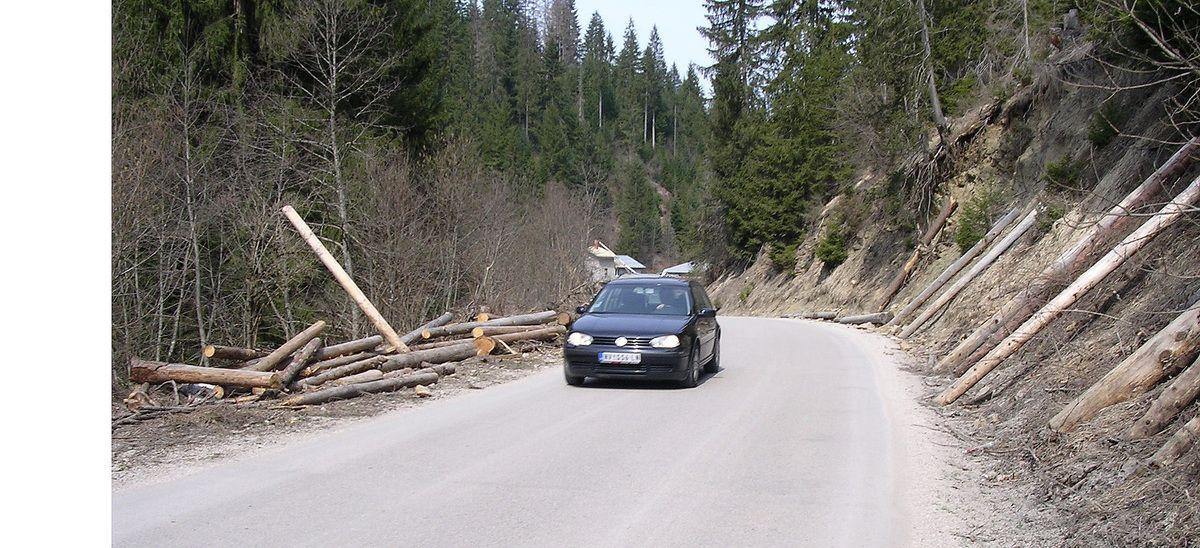 Немар чека инспекције,  балвани чувају пут у долини Злошнице