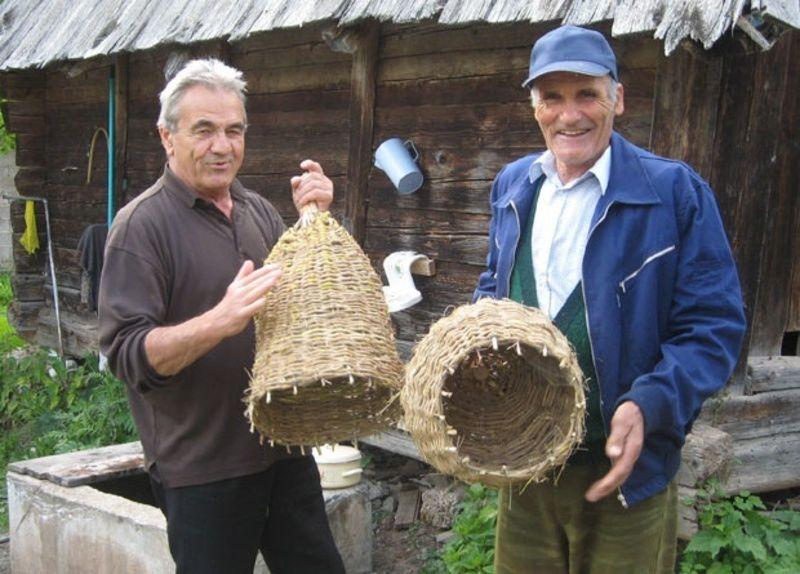 Кошница за пчеле - планинци свему вични - Фото Д. Гагричић
