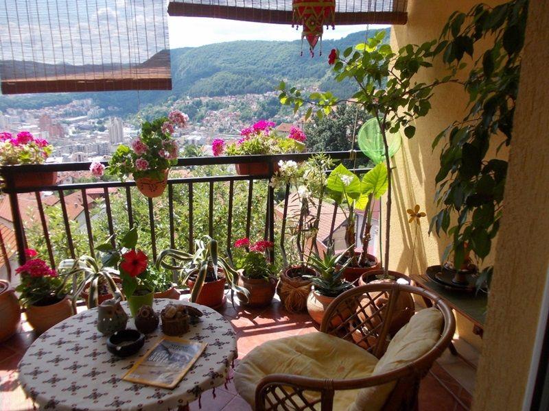 Најлепши балкон - Марина Трифуновић