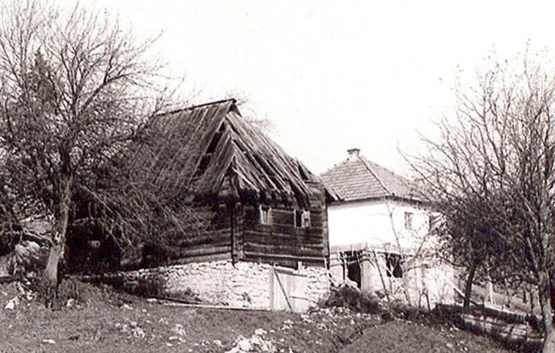 Брвнара и бела кућа Фото Приватна архива