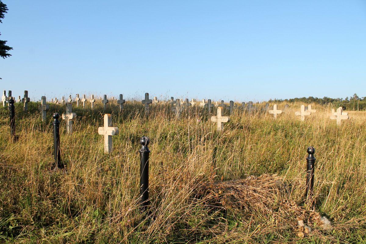 Брука - гробље ратника палих за отаџбину 1876-1878
