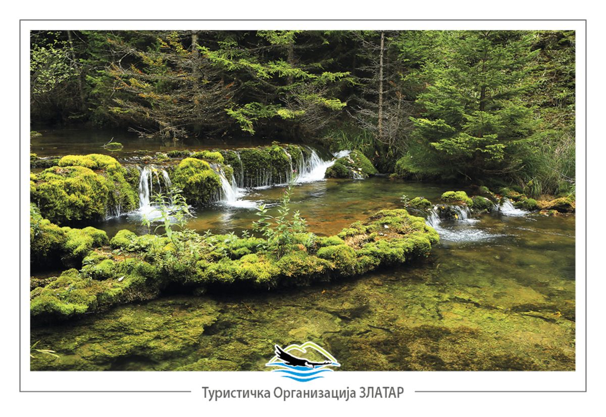Суза Чемернице – бигрене каде испод врела Трудовачке реке (фото: Станко Костић)