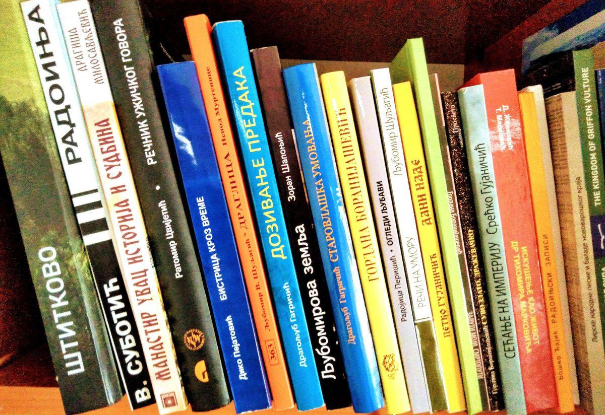 Књиге су најбоље тапије - дела завичајних аутора (Фото: Приватна архива)