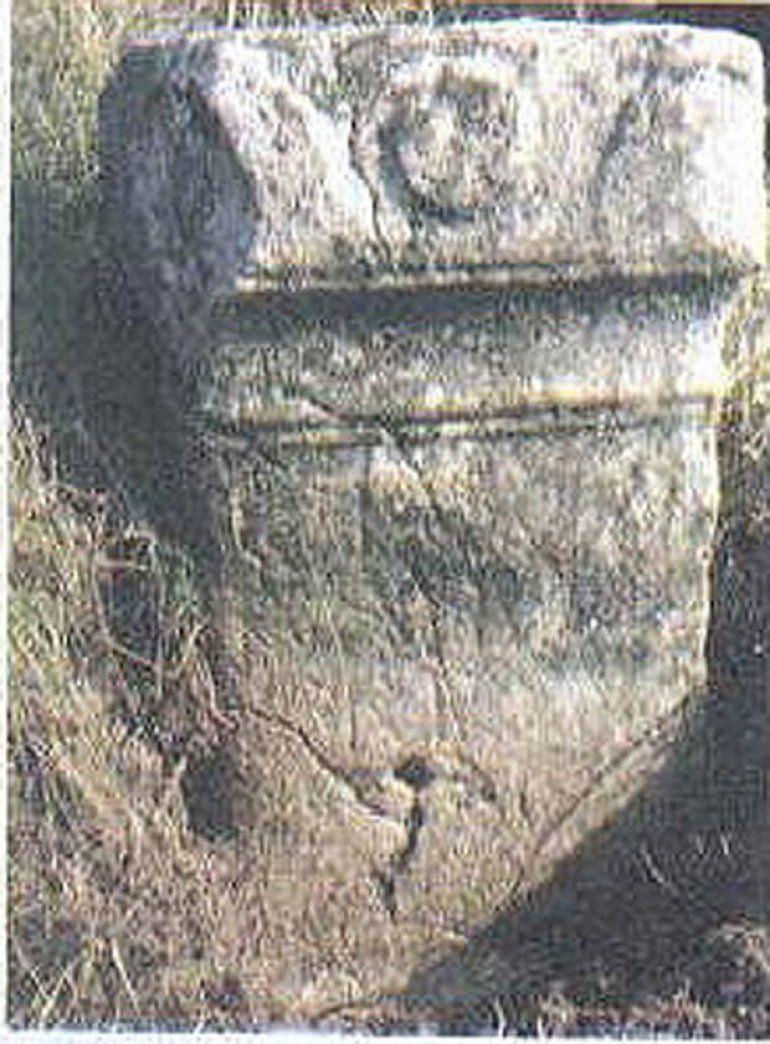 Наслеђе -  Ара на њиви у Акмачићима, Фото Архива Музеја у Ужицу