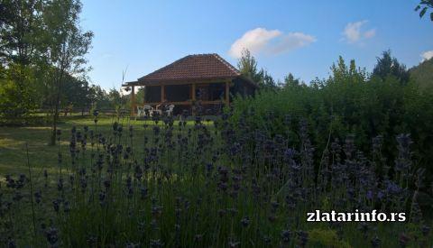 Brvnara na brdu Zlatarsko jezero
