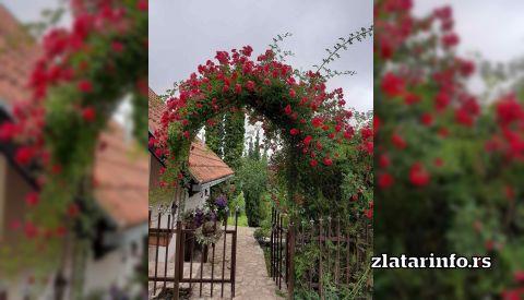 "Vila ""Jezero"" Zlatarsko jezero"