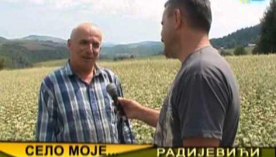 TV Priboj - Selo moje - Radijevići, Nova Varoš