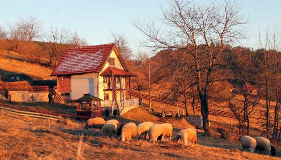 Ничу куће и викендице уз пут у засеоцима Драглице