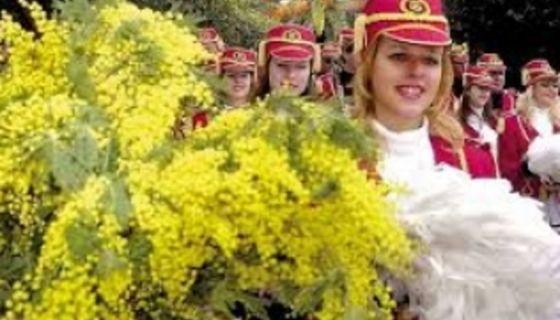Караван Празника мимозе на Златибору