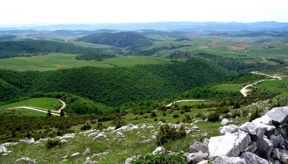Планина Јавор