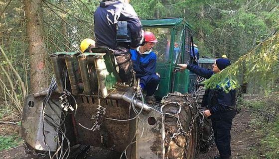 Квадратура круга: Дебеља заборављено село и дрвосече са Златара